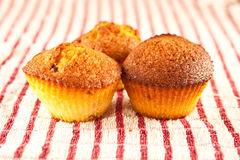 Muffins. Fresh muffins on a cloth Stock Image