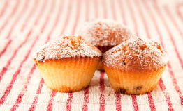 Muffins. Fresh muffins on a cloth Stock Photo