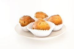 Muffins. Fresh muffins on a white background Royalty Free Stock Photography