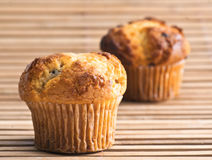 Muffins. Cupcakes with hints of chocolate on wooden background stock images