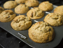 Muffins. Homemade muffins - a pan full of freshly baked muffins stock images