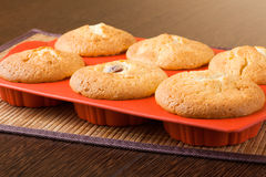 Muffins. In a silicon mold Royalty Free Stock Images