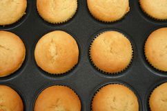 Muffins. In a form Stock Image