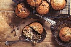 Muffins τσιπ σοκολάτας Στοκ εικόνα με δικαίωμα ελεύθερης χρήσης