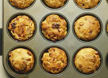 Muffins. Date-Nut Muffins in Muffin Pan royalty free stock photo