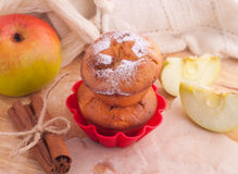 Muffins with apple and cinnamon Royalty Free Stock Images