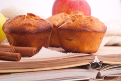 Muffins with apple and cinnamon Royalty Free Stock Photos