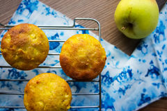 Muffins with apple on a cooling rack Stock Photography