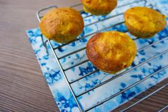 Muffins with apple on a cooling rack Royalty Free Stock Photos
