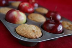 Muffins and apples in a pan Stock Images