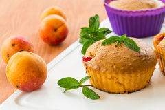 Muffins with apricots Stock Images