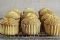 Muffins auf einem abkühlenden Gestell Lizenzfreies Stockbild