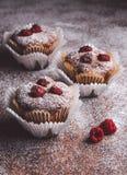 Muffins auf einem Holztisch bedeckt mit Zucker Lizenzfreie Stockfotos