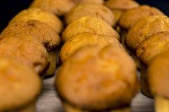 Muffins aus Ofen heraus Lizenzfreie Stockbilder