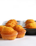 Muffins on baking tray. Close up of muffins on baking-tin isolated on white Royalty Free Stock Images
