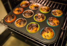 Muffins on a baking tray Royalty Free Stock Images