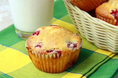 Muffins with berries Royalty Free Stock Images