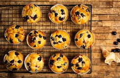 Muffins with berry fruit on a table royalty free stock photo