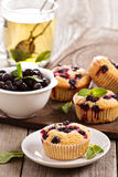 Muffins with black currant Royalty Free Stock Photo