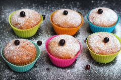 Muffins with black currant in silicone forms sprinkled royalty free stock photos