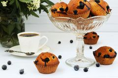 Muffins with black currant on a white background. Some of the muffins are located in a glass vase. Nearby is a cup of coffee and a bouquet of flowers stock images