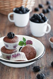 Muffins with blackberries and chocolate. Blackberry and chocolate muffins in bowl on the table, selective focus Royalty Free Stock Photo
