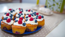Muffins with bluebarry, raspberry and whipping cream Royalty Free Stock Photos