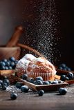 Muffins and blueberries stock image