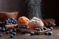 Muffins and blueberries sprinkled with powdered sugar stock image