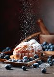 Muffins and blueberries sprinkled with powdered sugar royalty free stock image