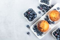 Muffins and blueberries on a white kitchen table royalty free stock photos