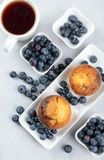 Muffins and blueberries on a white kitchen table stock photography