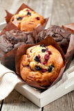 Muffins. Blueberry and chocolate muffins in paper cupcake holder stock photos