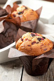 Muffins. Blueberry and chocolate muffins in paper cupcake holder royalty free stock images