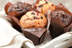Muffins. Blueberry and chocolate muffins in paper cupcake holder Royalty Free Stock Photo
