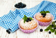 Muffins with blueberry Stock Photos