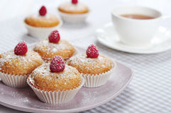 Muffins with bran Royalty Free Stock Photos