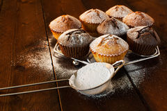 Muffins and caster sugar Royalty Free Stock Photo