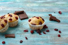 Muffins with cherry on a blue background, horizontal royalty free stock image
