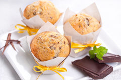 Muffins with chocolate Royalty Free Stock Photography
