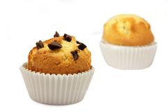 Muffins with chocolate. Two cupcakes with chocolate chips embedded on a white background stock photo