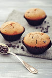 Muffins with chocolate Stock Image