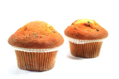 Muffins with chocolate chips. Before a white background stock photography