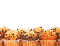 Muffins with Chocolate Chips. Group of muffins with chocolate chips. With space to write a text. On white background Royalty Free Stock Photos