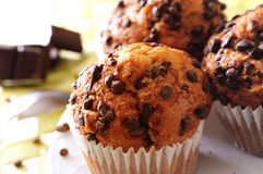 Muffins with chocolate chips Stock Photography
