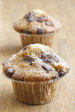 Muffins with chocolate chips Royalty Free Stock Images