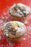 Muffins with chocolate chips Stock Images