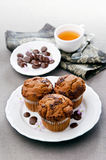 Muffins with chocolate chips. On white plate Royalty Free Stock Images