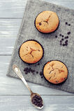 Muffins with chocolate drops Stock Photography