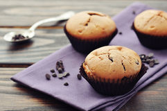 Muffins with chocolate drops Royalty Free Stock Photography